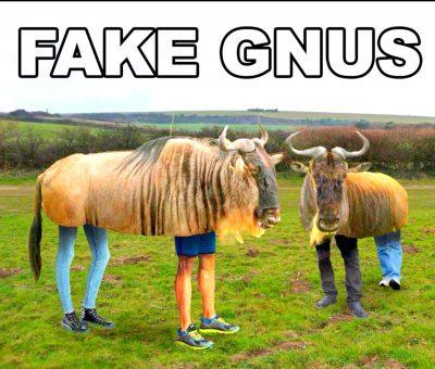 FakeNews-0011